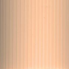 РИБКОРД 4240 персик, 5,4м